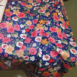 Ejemplo 1 de impresión textil digital por impresora textil digital WER-EP7880T